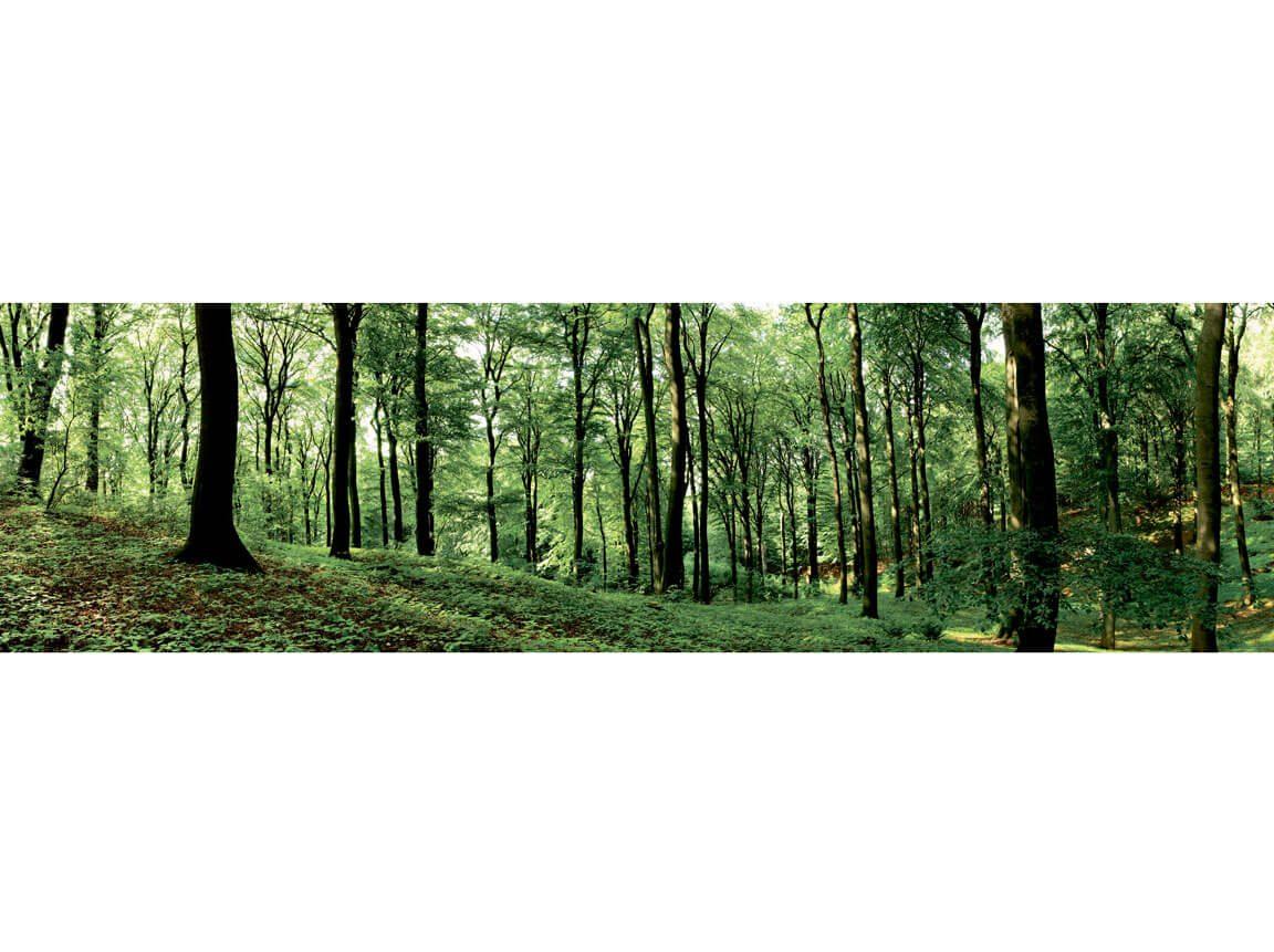 Skov - skovtur tema - banner 2. Udlejning / leje af kæmpe banner til temafest.