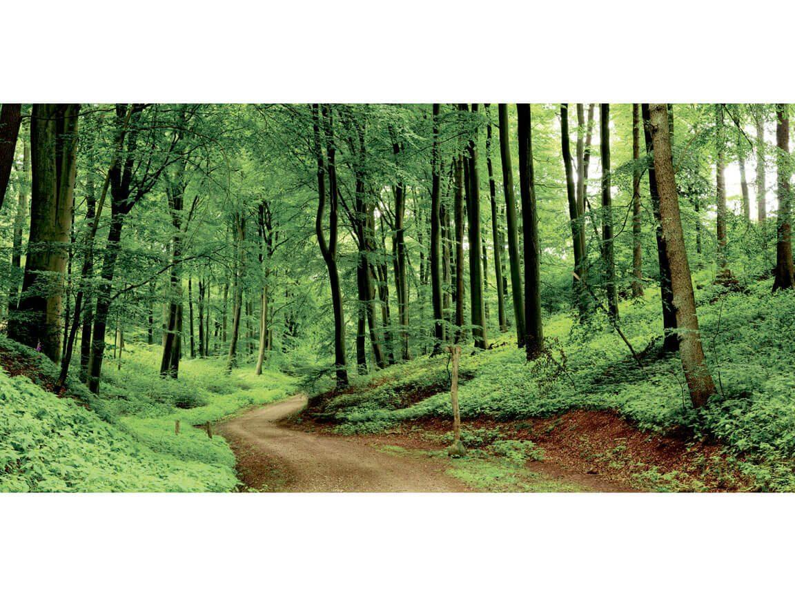 Skov - skovtur tema - banner 3. Udlejning / leje af kæmpe banner til temafest.
