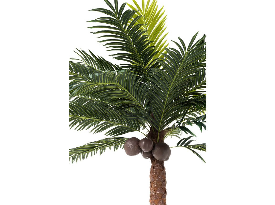 Udlejning / leje af kunstig palme. Kæmpe kunstig palme med masser af blade og nødder. Dekorativ og livagtig. Lejepris pr. dag kr. 300,-